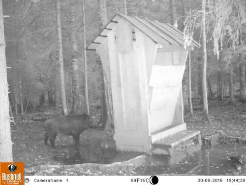 119598-bushnell-trail-cameras-trophy-cam-hd-wireless_9